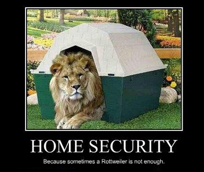 home-security-lion
