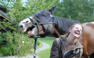 woman-horse-laughing